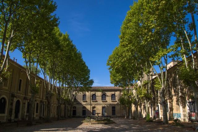 Visites guidées de l'Abbaye d'Aniane